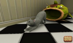 The Sims 3 Pets: Oopsie-Daisy the cat