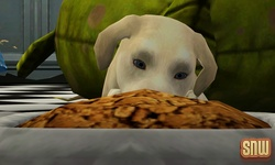 The Sims 3 Pets: BaBa the dog