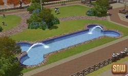 The Sims 3 Pets: Dog Pool